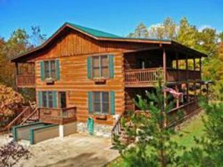 Black Bear Lodge - Image 1 - Bryson City - rentals