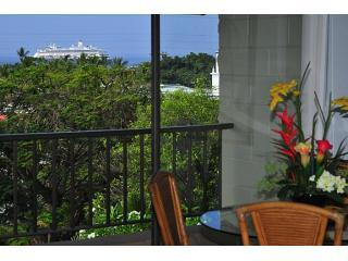 Kalankai Oceanview 1BR: HDTV,WiFi - Book now! - Kona Coast vacation rentals