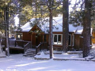 Pine Rock Cabin, Pool Table, Walk to Slopes/Golf - Big Bear Area vacation rentals