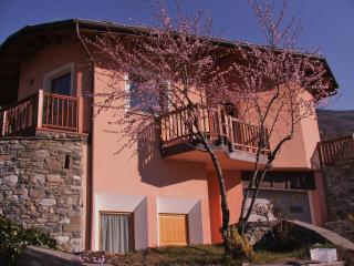 Alpine flat in the Valle d'Aosta for 2/3 persons - Nus vacation rentals