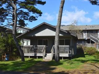 CABIN AT THE BEACH - Oregon Coast vacation rentals