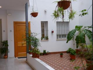 Charming and cozy  1 bedroom apartment in the historic centre with a shared Courtyard. WIFI - Seville vacation rentals