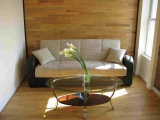 Duplex Suite  Luxury 2 Floor Rental in Park Slope - New York City vacation rentals