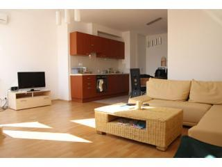 Kitchen-Living room - Budapest, Gizella apartment - Budapest - rentals