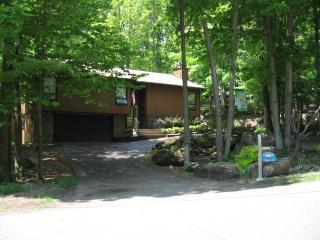 Luxurious & Beautiful Dream Home Jacuzzi & Sauna - Lake Ariel vacation rentals