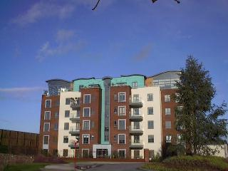 falcon1 - Cork City Ireland 2 bedroom sleeps 4 - Cork - rentals