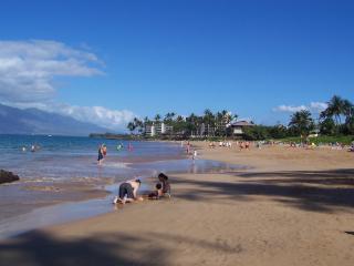 Our beach! - Book Spring/Summer 2015! Across Maui's best beach - Kihei - rentals