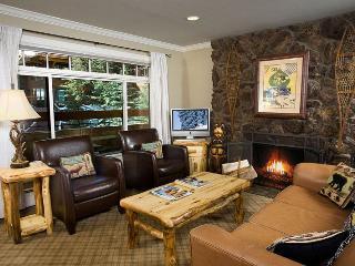 Fasching Haus Unit 290 - Aspen vacation rentals