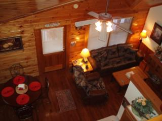 Got It All Yall Cabin, hot tub,Mtn Views,gas grill - Tellico Plains vacation rentals