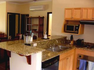 Exquisite Condo - Walking distance to the beach! - Playa Potrero vacation rentals