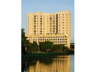 Tower11 - South Miami Luxury Rentals - Coconut Grove - rentals