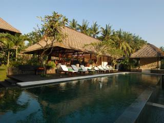 Villa Kanti Ubud, Bali. - Ubud vacation rentals