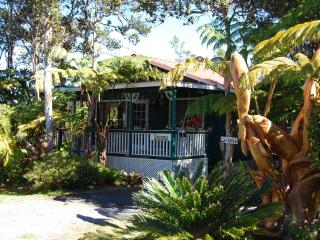 Artist Cottage A Place with Heart,Warmth&Charm!! - Volcano vacation rentals
