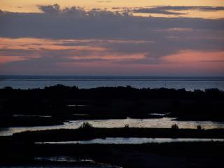 Stunning views H20/birdlife & fun,whimsical decor! - Cedar Key vacation rentals
