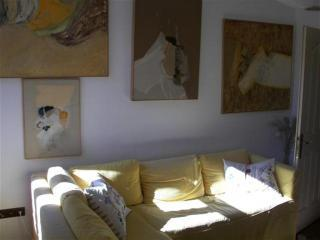 The Hen and chicken -your  home away  from home - Istanbul vacation rentals