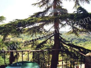 Villa Leopoldo C - Bettolle vacation rentals
