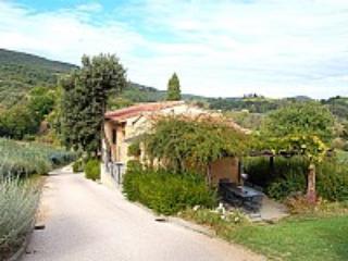 Appartamento Reginaldo A - Image 1 - San Gimignano - rentals