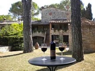 Villa Saveria N - Colle di Val d'Elsa vacation rentals