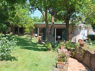 Villino delle Arance - Image 1 - Sorrento - rentals