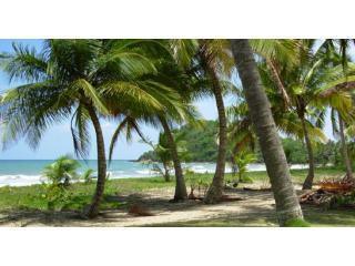 You'll be 150 feet from this beautiful beach. - Wonderful Four Bedroom Villa on Private Caribbean - Punta Santiago - rentals