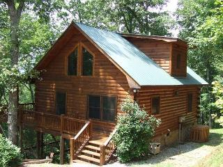 FALLING LEAVES - North Georgia Mountains vacation rentals