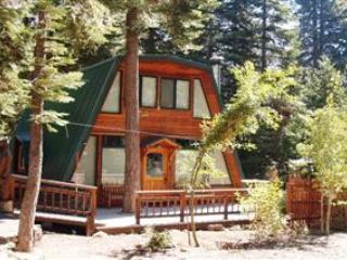 Springsteen Cozy Cabin - Tahoe City vacation rentals