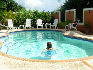 Wonderful Home With Large Private Pool! - Cayey vacation rentals