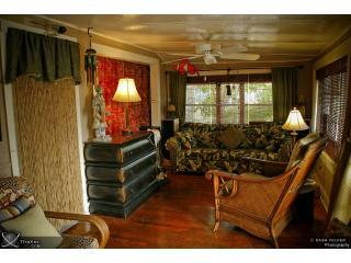 Sleeper sofa in living room overlooking Mandalay Ave - Classic Beach Cottage/ Steps to Sand/Pets Ok/ 3 BR - Clearwater - rentals