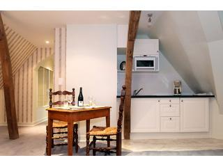 Charming kitchen and dining area. - Tower Suite: 4BR Apt in the Chateau des Sablons - Bourgueil - rentals