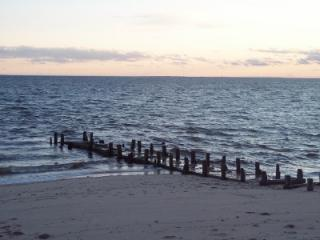 fishing jetty in front of cottage - Oceanfront N. Truro 2012 Top Rental Award Winner - North Truro - rentals