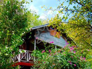Kingston Studio - Bequia - Lower Bay vacation rentals