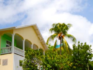 Ocean Palm View - Bequia - Lower Bay vacation rentals
