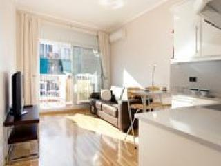 Luxury &Trendy Apartment in Central Barcelona City - Barcelona vacation rentals