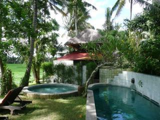Damai: beautiful house on rice fields in Ubud Bali - Ubud vacation rentals