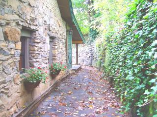 A MAGICAL RETREAT with Old World Charm and Leafy Views of Nearby Mountains. - Peaceful Romantic Asheville Cottage Hot Tub, Wi-Fi - Asheville - rentals