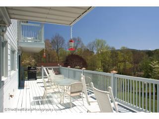 Watauga Lakefront Home - Bristol vacation rentals