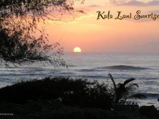 Kaha Lani Resort #103-From $118 per nite!King Bed! - Kapaa vacation rentals