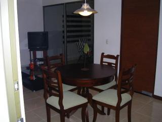 IMGP0045.JPG - Furnished Apartment (Cali,Colombia) - Cali - rentals