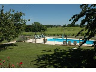 Saltwater swimming pool and vines - Cottage with pool on Armagnac vineyard, SW France - Eauze - rentals