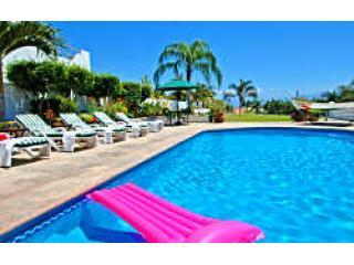 Large Private Pool - 15  feet x 30 feet - CASA PAROTA at La Puntilla - Puerto Vallarta - La Cruz de Huanacaxtle - rentals
