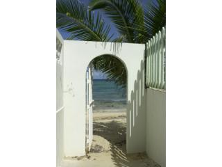 Beach Gate a Few Feet from Front Door - Beachfront Bungalow With Pool in Vieques Isle, PR - Isla de Vieques - rentals