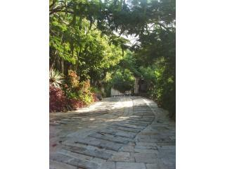 Entrance to property - Lion's Gate Getaway - Lush tropical setting - East End - rentals