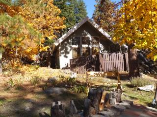Icicle Chalet: Mtn Views, Hot Tub, Fire & Privacy - Peshastin vacation rentals
