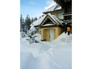 Whistler Retreat ~ Quiet Location in Village North - Honolulu vacation rentals
