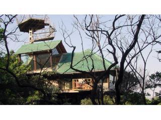 The Heritage Machan - The Heritage Machan - A Tree House in Lonavala - Lonavla - rentals