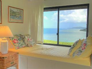 Sealodge J2: Oceanfront views all the way to the lighthouse! - Princeville vacation rentals
