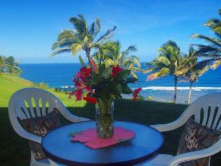 Sealodge J4: Panoramic oceanfront views, tranquil ground floor setting - Princeville vacation rentals