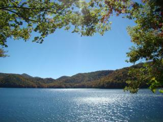 Lakefront 4/3.5 Home,Gated,Dock,Kayaks, Canoe,Wifi - Brasstown vacation rentals