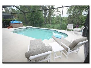 Large South Facing Pool and Lanai with Hot Tub/Spa and Stunning Conservation Views - Penny from Heaven 6/4 Disney home with X factor - Kissimmee - rentals
