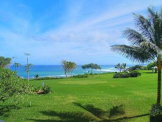Kamahana 24: Great view and great price!  Near beach paths and golf. - Princeville vacation rentals
